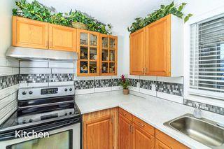 Photo 9: 7315 181 Street in Edmonton: Zone 20 House for sale : MLS®# E4217669
