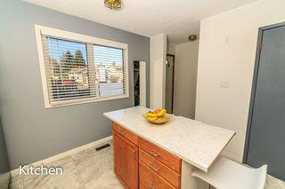 Photo 12: 7315 181 Street in Edmonton: Zone 20 House for sale : MLS®# E4217669