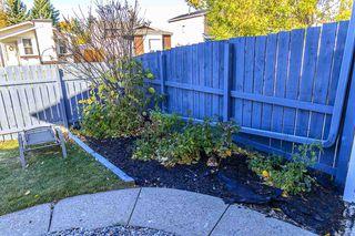 Photo 27: 7315 181 Street in Edmonton: Zone 20 House for sale : MLS®# E4217669