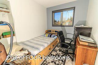 Photo 24: 7315 181 Street in Edmonton: Zone 20 House for sale : MLS®# E4217669