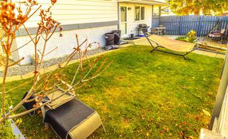 Photo 37: 7315 181 Street in Edmonton: Zone 20 House for sale : MLS®# E4217669