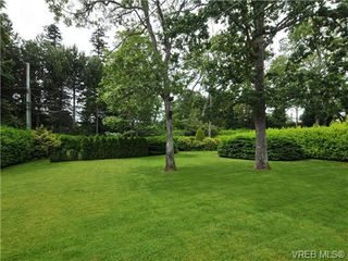 Photo 19: 3320 Gibbs Rd in VICTORIA: OB Henderson House for sale (Oak Bay)  : MLS®# 672353