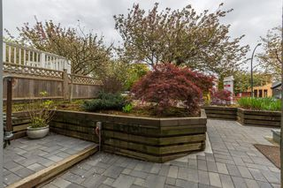 Photo 41: 3664 W 15TH Avenue in Vancouver: Point Grey House for sale (Vancouver West)  : MLS®# V1117903