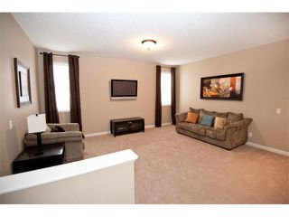 Photo 16: 40 CHAPARRAL VALLEY Green SE in Calgary: Chaparral Valley House for sale : MLS®# C4021100