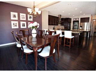Photo 8: 40 CHAPARRAL VALLEY Green SE in Calgary: Chaparral Valley House for sale : MLS®# C4021100