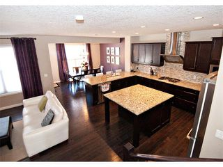 Photo 7: 40 CHAPARRAL VALLEY Green SE in Calgary: Chaparral Valley House for sale : MLS®# C4021100