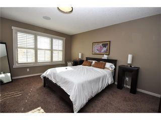 Photo 11: 92 MIKE RALPH Way SW in Calgary: Garrison Green House for sale : MLS®# C4045056