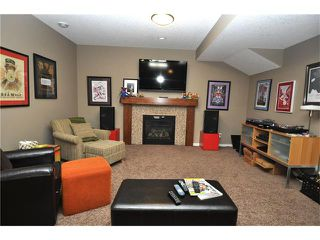 Photo 23: 92 MIKE RALPH Way SW in Calgary: Garrison Green House for sale : MLS®# C4045056