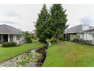 """Photo 17: 16 21746 52 Avenue in Langley: Murrayville Townhouse for sale in """"Glenwood Village Estates"""" : MLS®# R2087086"""