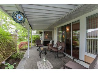 """Photo 19: 16 21746 52 Avenue in Langley: Murrayville Townhouse for sale in """"Glenwood Village Estates"""" : MLS®# R2087086"""