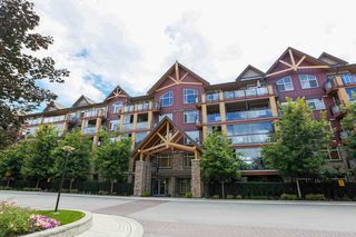 "Photo 1: 226 8288 207A Street in Langley: Willoughby Heights Condo for sale in ""YORKSON CREEK"" : MLS®# R2096294"