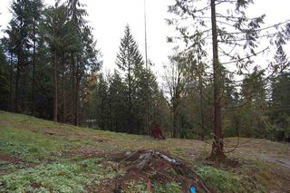 Photo 6: LT. B 32645 RICHARDS Avenue in Mission: Mission BC Land for sale : MLS®# R2118252