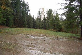 Photo 4: LT. B 32645 RICHARDS Avenue in Mission: Mission BC Land for sale : MLS®# R2118252