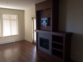 Photo 5: 302 4365 HASTINGS Street in Burnaby: Vancouver Heights Condo for sale (Burnaby North)  : MLS®# R2128194