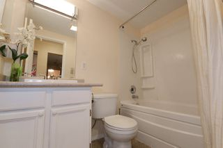 "Photo 12: 116 3411 SPRINGFIELD Drive in Richmond: Steveston North Condo for sale in ""BAYSIDE COURT"" : MLS®# R2176581"