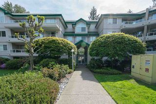 """Photo 1: 219 2750 FAIRLANE Street in Abbotsford: Central Abbotsford Condo for sale in """"THE FAIRLANE"""" : MLS®# R2185892"""