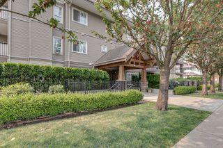"Photo 3: 112 22150 DEWDNEY TRUNK Road in Maple Ridge: West Central Condo for sale in ""Falcon Manor"" : MLS®# R2196263"