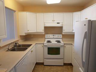 Photo 4: 204 490 LORNE ST in KAMLOOPS: SOUTH KAMLOOPS Multifamily for sale (kAMLOOPS)  : MLS®# 143430
