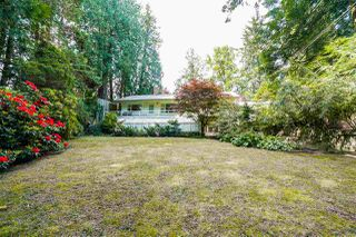 Photo 20: 4743 NEVILLE Street in Burnaby: South Slope House for sale (Burnaby South)  : MLS®# R2272990