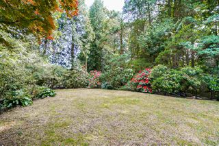 Photo 19: 4743 NEVILLE Street in Burnaby: South Slope House for sale (Burnaby South)  : MLS®# R2272990