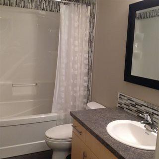 Photo 27: 7143 SASKATCHEWAN Drive in Edmonton: Zone 15 House for sale : MLS®# E4118870