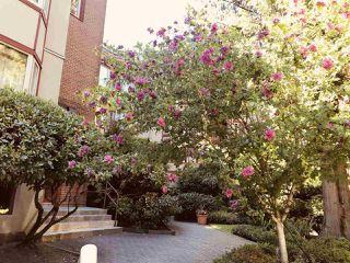 "Photo 3: 229 7651 MINORU Boulevard in Richmond: Brighouse South Condo for sale in ""Cypress Point"" : MLS®# R2291290"