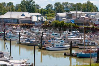 "Photo 14: 413 12639 NO 2 Road in Richmond: Steveston South Condo for sale in ""NAUTICA SOUTH"" : MLS®# R2293328"