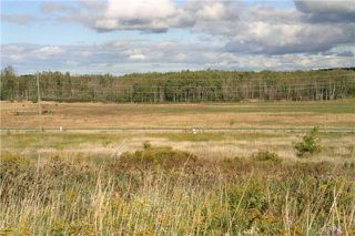 Photo 8: Lot 19 Con 2 in Amaranth: Rural Amaranth Property for sale : MLS®# X4235429