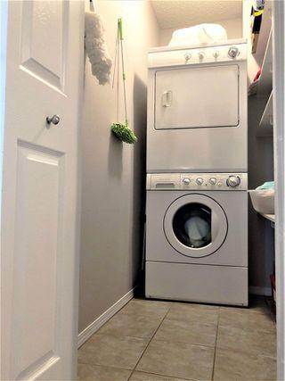 Photo 23: 9015 187 Street in Edmonton: Zone 20 House for sale : MLS®# E4142746