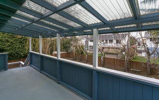 Photo 9: 5483 CHESTNUT Crescent in Delta: Delta Manor House for sale (Ladner)  : MLS®# R2340663