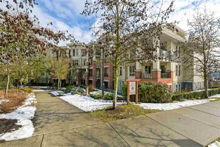 "Photo 17: 101 245 ROSS Drive in New Westminster: Fraserview NW Condo for sale in ""The Grove"" : MLS®# R2347558"