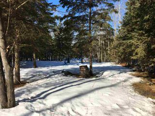 Photo 20: 43 Ella Mae: Rural Athabasca County House for sale : MLS®# E4151232