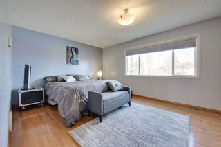 Photo 17: 5 RENAUD Court: Beaumont House for sale : MLS®# E4152484