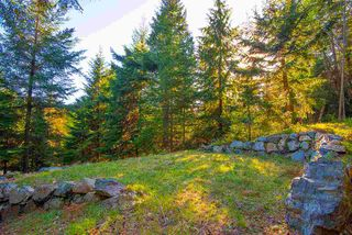 Photo 4: 347 AERIE TREE Lane: Bowen Island Land for sale : MLS®# R2369332