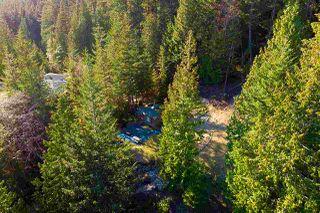 Photo 12: 347 AERIE TREE Lane: Bowen Island Home for sale : MLS®# R2369332
