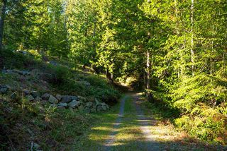 Photo 3: 347 AERIE TREE Lane: Bowen Island Land for sale : MLS®# R2369332