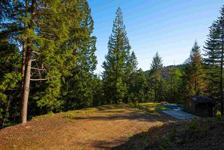 Photo 5: 347 AERIE TREE Lane: Bowen Island Land for sale : MLS®# R2369332