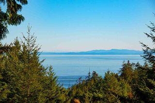 Photo 2: 347 AERIE TREE Lane: Bowen Island Home for sale : MLS®# R2369332