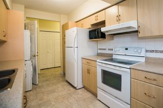 Photo 21: 10705 UNIVERSITY Avenue in Edmonton: Zone 15 House for sale : MLS®# E4156661