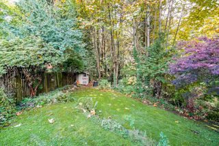 Photo 19: 517 W 23RD Street in North Vancouver: Central Lonsdale House for sale : MLS®# R2374741