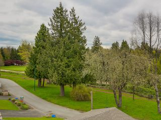 Photo 4: 7866 Vivian Drive in Vancouver: Home for sale : MLS®# V1116642