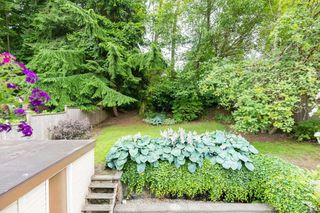 """Photo 19: 249 ANGELA Drive in Port Moody: College Park PM House for sale in """"College Park"""" : MLS®# R2387582"""
