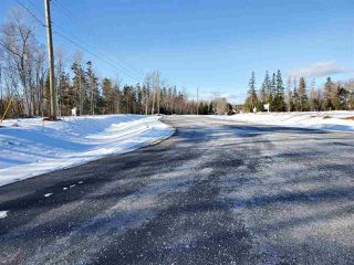 Photo 5: 4 Beaumont Court in Valley: 104-Truro/Bible Hill/Brookfield Vacant Land for sale (Northern Region)  : MLS®# 201921854