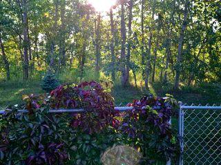 Photo 43: 102 Ridgemont Crescent: Sherwood Park House for sale : MLS®# E4186066
