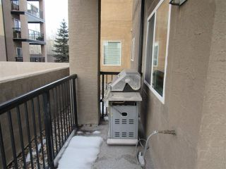 Photo 22: 103 14612 125 Street in Edmonton: Zone 27 Condo for sale : MLS®# E4186440