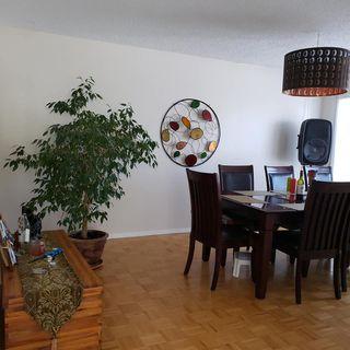 Photo 8: 3414 39 Street: Leduc House for sale : MLS®# E4190597