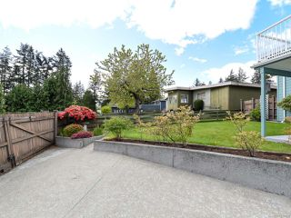 Photo 51: 331 McCarthy St in CAMPBELL RIVER: CR Campbell River Central House for sale (Campbell River)  : MLS®# 838929