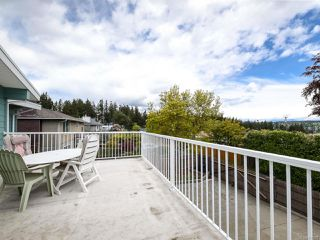 Photo 44: 331 McCarthy St in CAMPBELL RIVER: CR Campbell River Central House for sale (Campbell River)  : MLS®# 838929