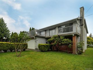 Photo 22: 4174 Glanford Ave in Saanich: SW Glanford Single Family Detached for sale (Saanich West)  : MLS®# 843773