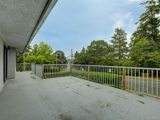 Photo 17: 4174 Glanford Ave in Saanich: SW Glanford Single Family Detached for sale (Saanich West)  : MLS®# 843773
